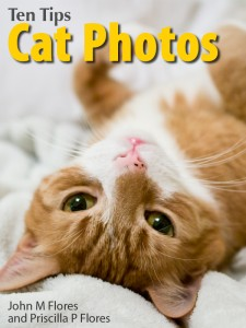 Ten-Tips--Cat-Photos-cover-v2-nate-on-back